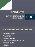 Anathomy GEH