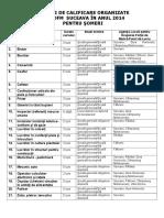 Oferta Cursuri 2014 (1)