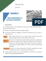 Tema proiect an IV Bologna, CCIA, 2014-2015.pdf