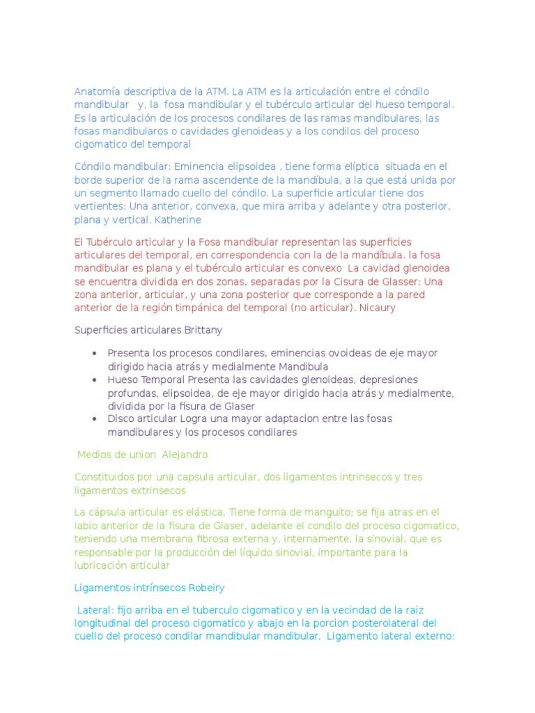 Anatomía Descriptiva de La ATM