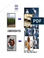 DIAPOSITIVAS CARBOHIDRATOS.pdf