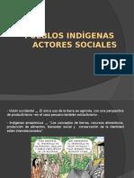 Pueblos indígenas Actores Sociales.pptx