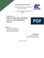 Práctica de PCR