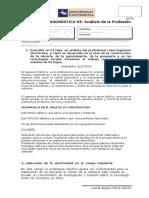 01 EVALUACIÓN DIAGNÓSTICA - Análisis de la Profesión
