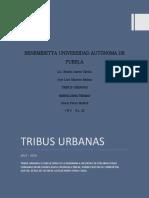 """Ensayo """"Las Tribus Urbanas"""""""