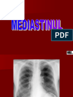 Mediastinul
