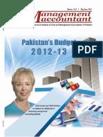 Budget Brief 2013