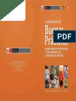 II Catálogo de Buenas Prácticas en Materia de Prevención y Tratamiento del Consumo de Drogas 2012