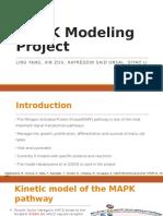 Computational Model for MAPK pathway