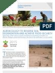 agroecologiapararevertirladegradaciondelsueloyconsolidarlaseguridadalimentaria.pdf