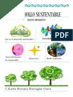 boletin imformativo.pdf