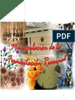 Manipulación de La Fermentación Ruminal (Libro)