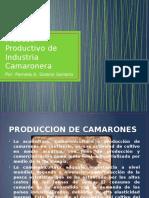 Proceso Productivo de Industria Camaronera