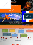 Metodologia y Táctica Completa Nivel 1