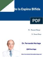 Causas de la Espina Bifida