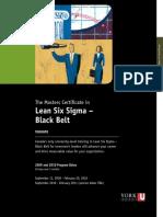 Lean Six Sigma - Black Belt