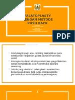 Pushback Methode Palatoplasty
