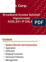 VigorAccess Overview.ppt