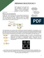 10. Membranas Biológicas II