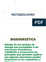 METABOLISMO.ppt