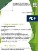 Aula Determinantes 2015