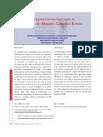 Metodología evaluación oleoductos con corrosión externa