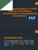 Vibrio Parahemolyticus EXPOSICION 2013