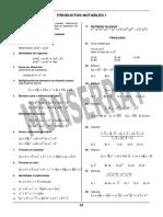 Productos I.pdf