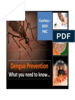 Know About Dengue