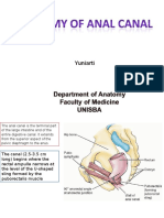 Anatomy of Anal Canal(1)