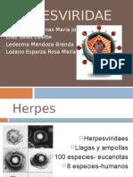 Herpes Viri Dae
