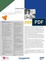 sap_dedeman_1.pdf