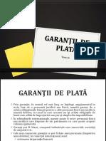 6. Garantiile de Plata