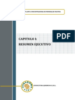 CAP 1 Resumen Ejecutivo2
