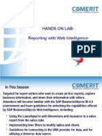 Reporting Web Intelligence