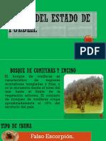 Fauna Del Estado de Puebla