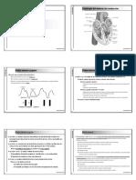 Cardiologia Diapositivas 2004-2005