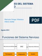 3.- MOexcitabilidad SN 27Agosto12