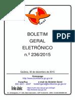 bge-236