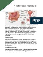 25 Penyakit Pada Sistem Reproduksi Manusia
