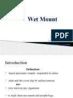 Wet mount