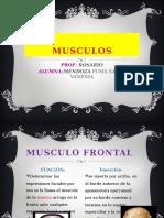 Musculo Fisioterapia