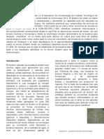 Articulo Levaduras