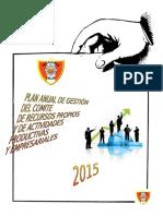 PLAN-RECUR-PROPIOS-IEPNC-2015.docx