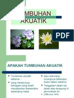 penanaman tumbuhan akuatik.ppt