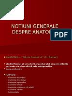 Structuri de Rezistenta La Nivelul Membrelor1
