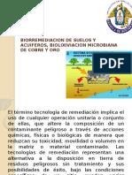 Biorremediacion suelos