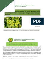 Biofertilización Del Limón Mexicano de La a a La z