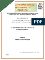 PLAN DE MANEJO DE RSU DE LA VILLA TECOLUTILLA COMALCALCO.docx