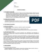 Instructivo+de+Debate+22015